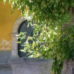 Pályázat – Rabnak lenni Szentendrén